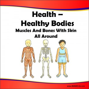 Healthy Bodies Lesson