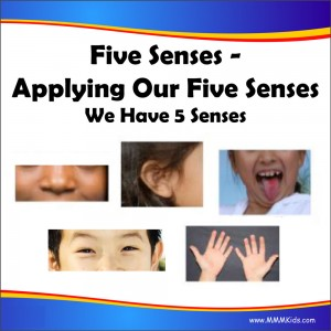 We Have Five Senses