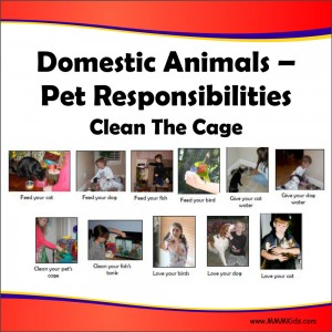 Pet Responsibilities Lesson