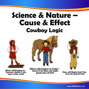 Cause & Effect -- Cowboy Logic
